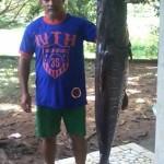 pescador300.jpg