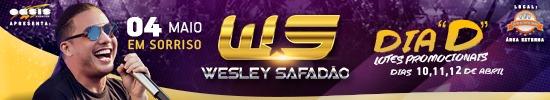 Wesley Safadão 550×100